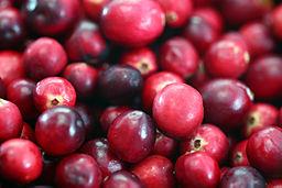 256px-Cranberries20101210